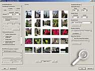 ACDSee 6.0 Deluxe - Kontaktabzug [Screenshot: MediaNord]