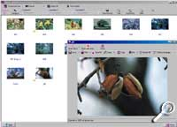 Idex - Thumbnail-Ansicht [Foto: Photoworld]