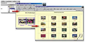 ThumbNailer - fertige HTML-Webseite [Screenshot: Photoworld]