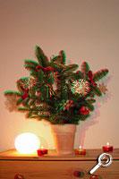 Weihnachtsstrauß als Rot-Grün-3D-Bild. Für den dreidimensionalen Eindruck muss man eine Rot-Grün-Brille aufsetzen [Foto: MediaNord]